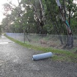 Offset site management at Cherry Street – Harry Pottage Reserve in McLeod, Victoria 2011 – 20142014 – 2016
